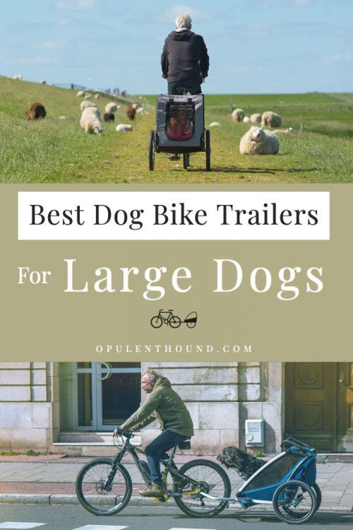The Best Large Dog Bike Trailers