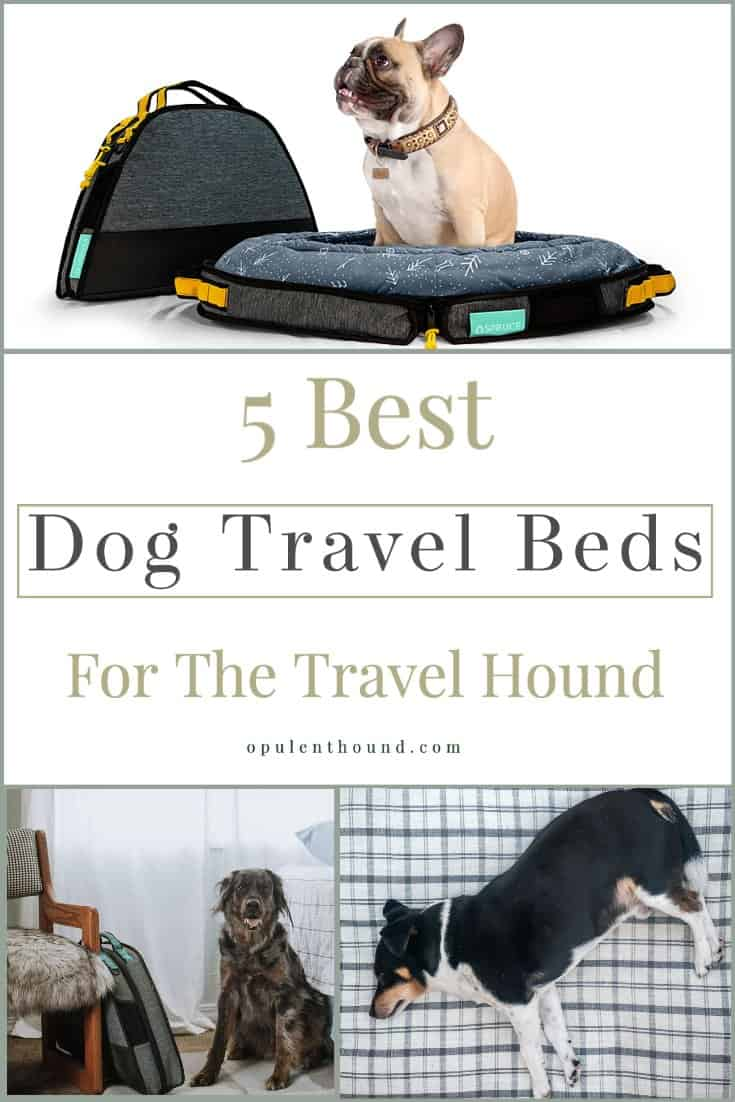 Pinnable image with collage dogs and travel beds with text overlay - 5 best dog travel beds for the travel hound